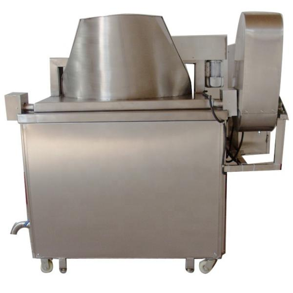 Kitchen Equipment Natural Gas Chips Fryer, Equip Oil Filter System with Ce #1 image