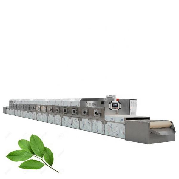 Fruit Cleaning Equipment Herb Cleaning Machine in Stock #1 image
